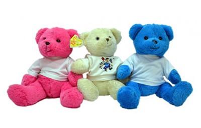 דובי יושב בגדלים שונים + הדפסה על החולצה
